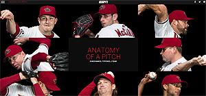 pitchanatomy