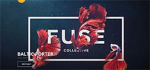 fusecollective